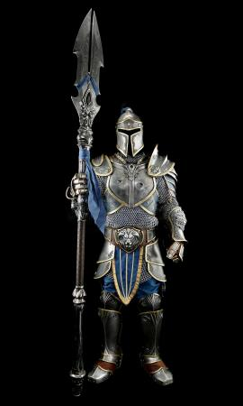 Lot # 91: Alliance Royal Guard Distressed Armor With Poleaxe