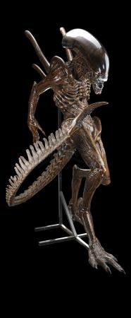 Lot #41 - ALIEN: RESURRECTION (1997) - Xenomorph Alien Display with Tail